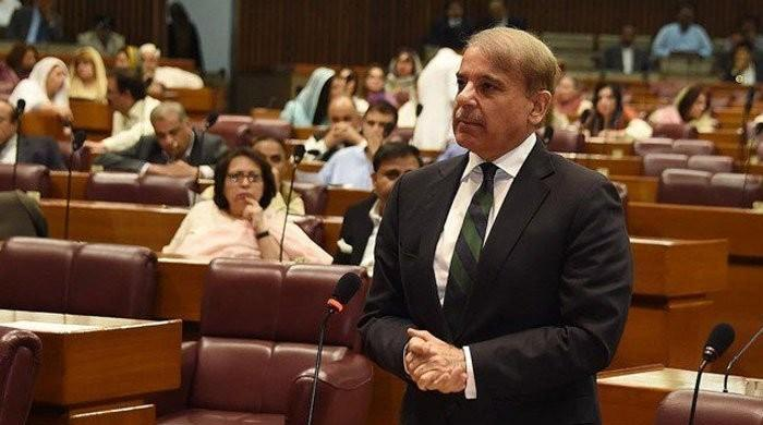 Opposition Leader Shehbaz demands re-bidding of Mohmand Dam, raises question over transparency